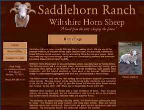 Saddlehorn Ranch - Wiltshire Horn Sheep - Harper, TX